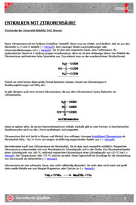 Fachstudie Zitronensäure, Universität Bielefeld, Prof. Blumes